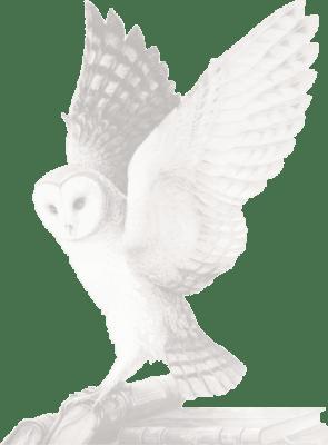 Logo Éditions d'art Monelle Hayot